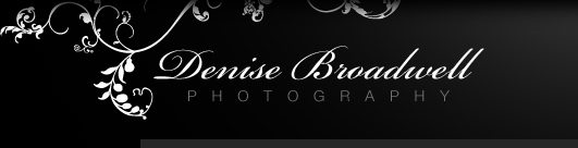 Denise Broadwell Photography - Weddings, People, Nature, Action - Santa Cruz, CA